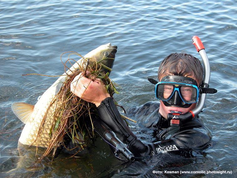все о подводной рыбалке видео